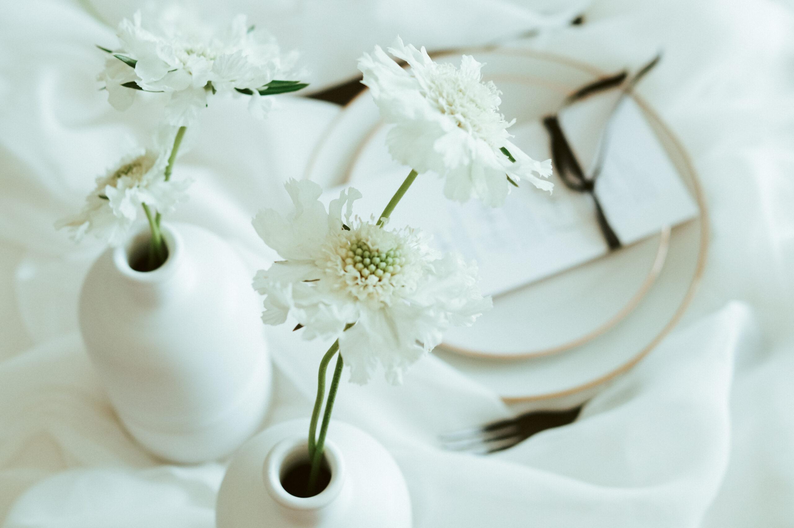 eine weiße Tischdecke, wölkenartig, dazu einzelne weiße Blumen in minimalistischer Form, runde Teller mit Goldrand und schwarzes Besteck. Ein Hochzeitskonzept im minimaoistischen Stil.